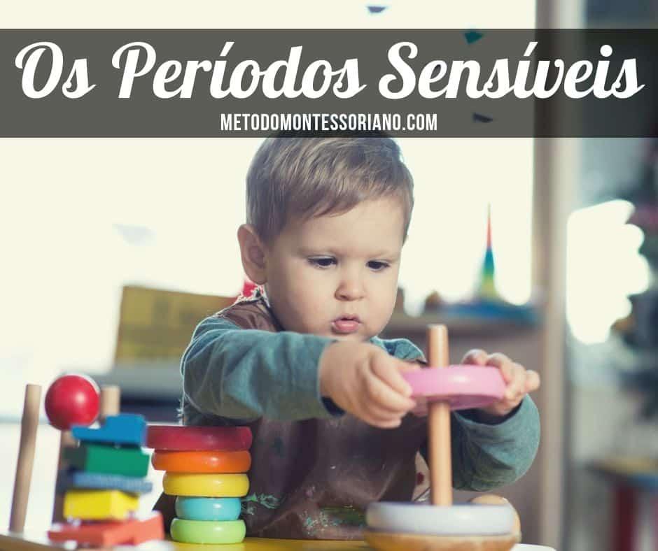 períodos sensíveis da mente-absorvente